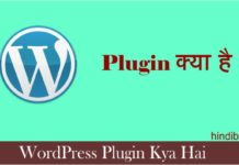 WordPress Plugin Kya Hai